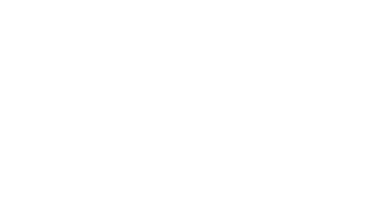 SKILLS and AMBITION